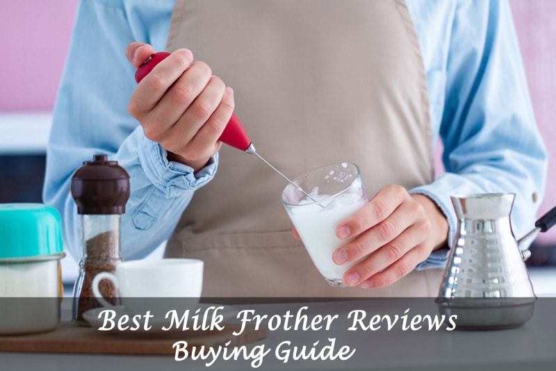 best milk frother reviews