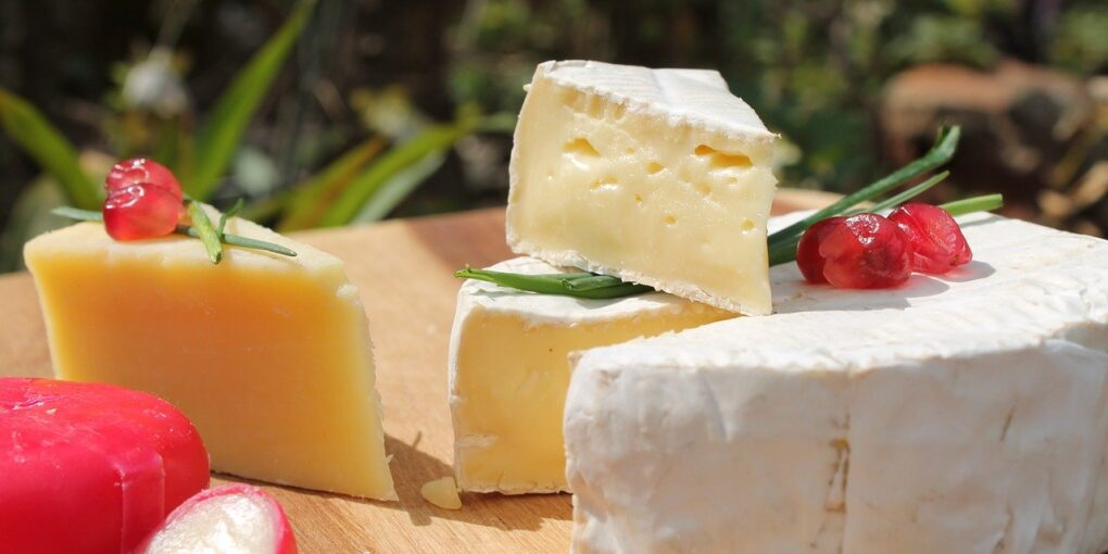 Best Substitute for Gruyere Cheese for Your Kitchen