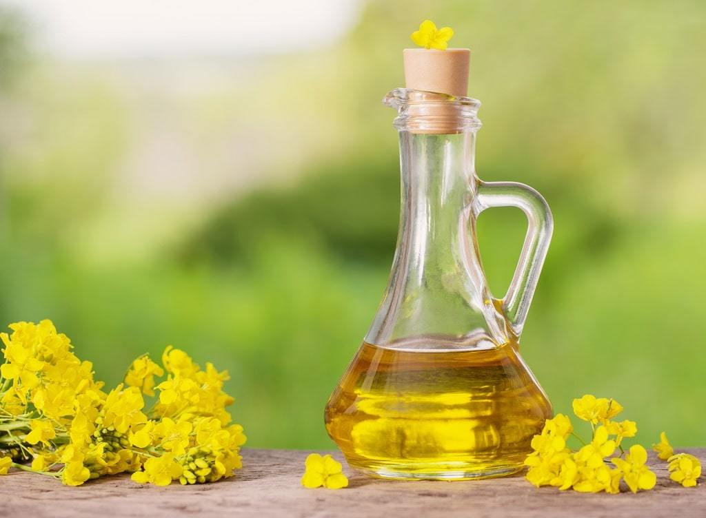Is It Safe to Fry with Canola Oil