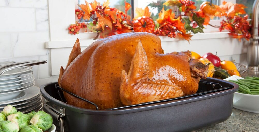 best turkey roaster oven reviews